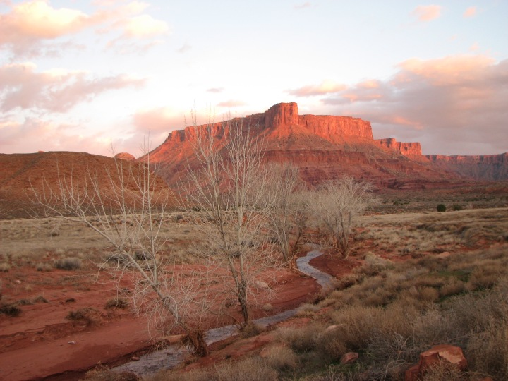 Professor Creek at sunset, Photo courtesy Laura Kamala (c)